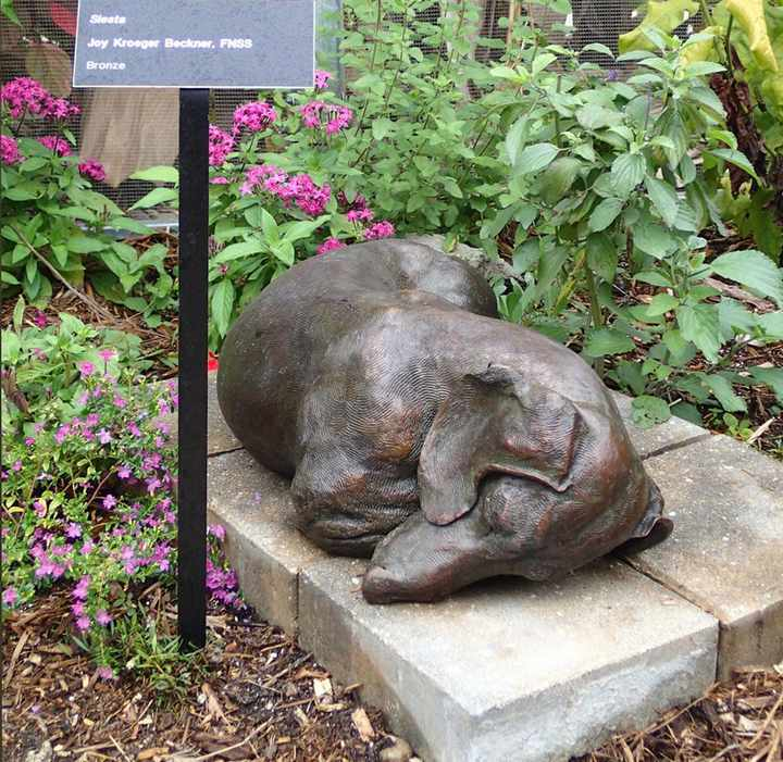 Siesta SS Life size Standard Smooth Dachshund Bronze Sculpture by